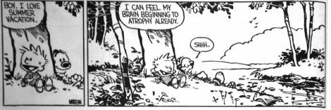 calvin-and-hobbes-brain-atrophy